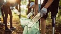 Einsammeln von Plastikfalschen im Wald