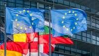 Flaggen von EU und Mitgliedstaaten vor dem Parlamentsgebäude in Straßburg