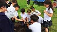 Kinder in Schuluniformen pflanzen einen Baum