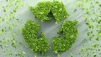 Symbolbild Recycling: Drei aus Blättern gebidete Pfeile formen einen Kreis